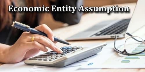 economic assumption