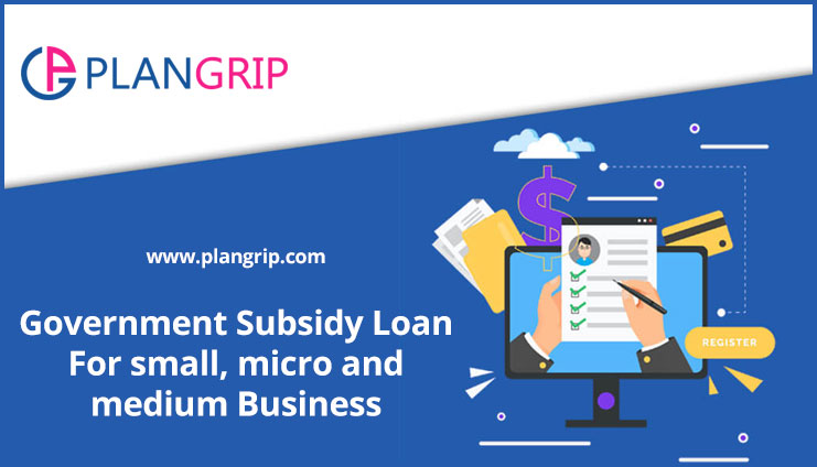 Government Subsidy Loan For small, micro and medium Business