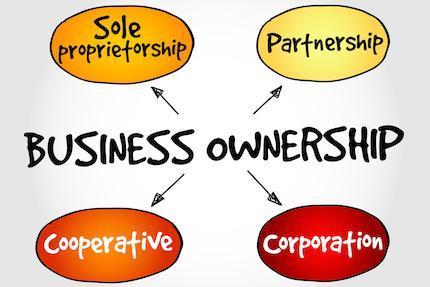 Business Ownership - LLC vs Corporation