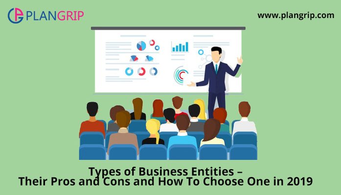 Types of Business Entities - Their Pros and Cons and How To Choose One in 2019